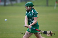 limerick all ireland junior camogie champions 2014 (67)