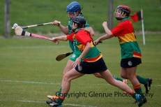 limerick all ireland junior camogie champions 2014 (68)
