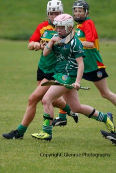 limerick all ireland junior camogie champions 2014 (69)