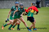 limerick all ireland junior camogie champions 2014 (7)