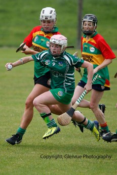 limerick all ireland junior camogie champions 2014 (70)