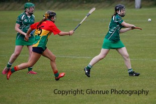 limerick all ireland junior camogie champions 2014 (71)