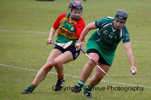 limerick all ireland junior camogie champions 2014 (76)