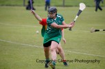 limerick all ireland junior camogie champions 2014 (77)