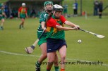 limerick all ireland junior camogie champions 2014 (78)
