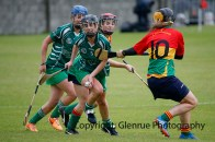 limerick all ireland junior camogie champions 2014 (8)