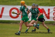 limerick all ireland junior camogie champions 2014 (80)