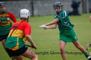 limerick all ireland junior camogie champions 2014 (9)
