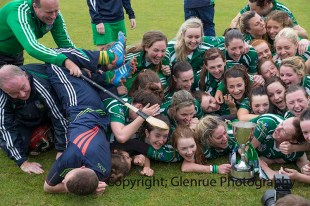 limerick all ireland junior camogie champions 2014 (90)
