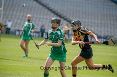 all ireland intermediate camogie final (46)