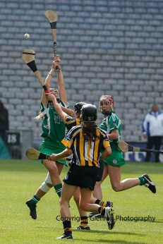 all ireland intermediate camogie final (48)