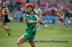 all ireland intermediate camogie final (77)