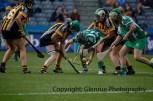 all ireland intermediate camogie final (80)