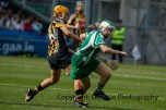 all ireland intermediate camogie final (84)