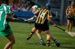 all ireland intermediate camogie final (86)