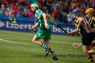 all ireland intermediate camogie final (87)