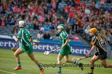 all ireland intermediate camogie final (89)