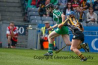 all ireland intermediate camogie final (92)