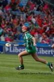 all ireland intermediate camogie final (94)