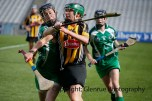 all ireland intermediate camogie final (99)
