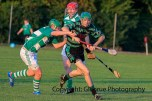 glenroew v claughaun intermediate hurling 2014 (20)