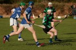glenroe v dromin athlacca junior (13)
