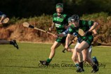 glenroe v dromin athlacca junior (15)