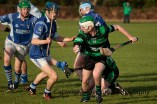 glenroe v dromin athlacca junior (18)