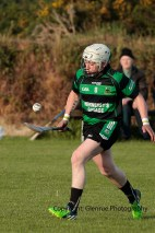 glenroe v dromin athlacca junior (27)