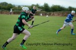 glenroe v dromin athlacca junior (31)