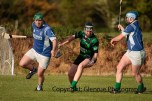 glenroe v dromin athlacca junior (8)