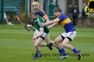 limerick v tipperary u21 hurling (10)