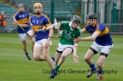 limerick v tipperary u21 hurling (11)