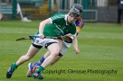 limerick v tipperary u21 hurling (12)