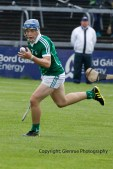 limerick v tipperary u21 hurling (16)