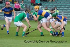 limerick v tipperary u21 hurling (2)