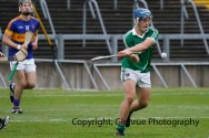 limerick v tipperary u21 hurling (35)