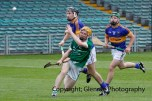 limerick v tipperary u21 hurling (48)