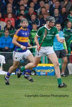 limerick v tipperary u21 hurling (5)
