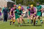 limerick v wexford senior camogie 5-5-2015 (48)