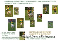 ballylanders ladies senior county final 2015 (1)