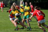 ballylanders ladies senior county final 2015 (101)