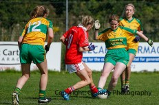 ballylanders ladies senior county final 2015 (103)