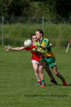 ballylanders ladies senior county final 2015 (111)