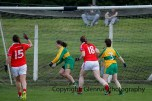 ballylanders ladies senior county final 2015 (118)