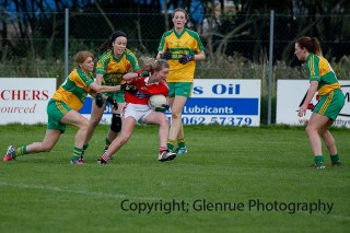 ballylanders ladies senior county final 2015 (119)