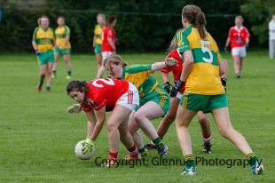 ballylanders ladies senior county final 2015 (123)