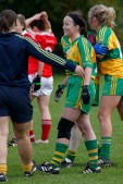ballylanders ladies senior county final 2015 (130)