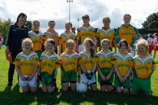 ballylanders ladies senior county final 2015 (166)