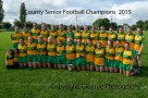 ballylanders ladies senior county final 2015 (188)